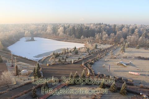 Предприятие сферы услуг, Егорьевское ш, 29 км от МКАД, Жуковский, . - Фото 2
