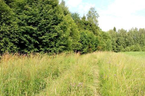 Продам лесной участок 15 соток в д. Гришино. - Фото 2