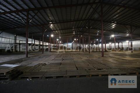 Аренда помещения пл. 6000 м2 под склад, склад ответственного хранения, . - Фото 5