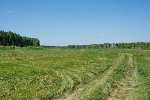 Продажа участка, Александровка, Аннинский район