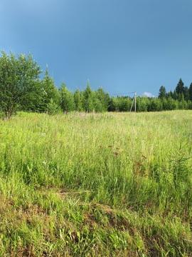 Продам земельный участок 26 соток ИЖС, село Гольяны, улица Лесная - Фото 5
