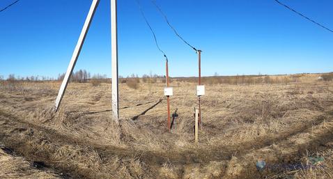 Оформленный участок 26.7 сот. в дер. Степаньково Шаховской района - Фото 5