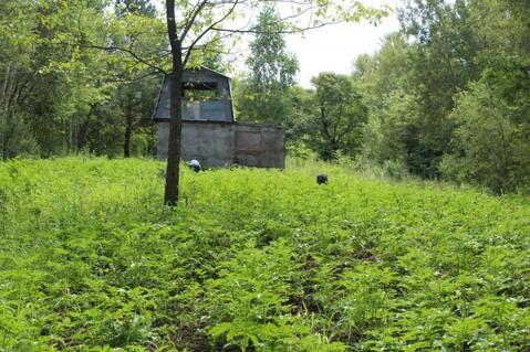 Продается земельный участок, с. Рощино, стд - Фото 3