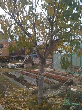 Киевское ш. 11 км от МКАД, Лапшинка, Участок 6 сот. - Фото 3