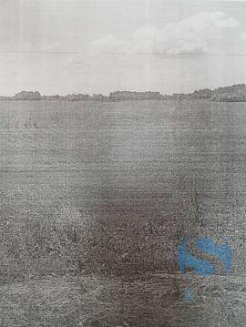 Продажа земельного участка, Нижняя Тавда, Нижнетавдинский район - Фото 3