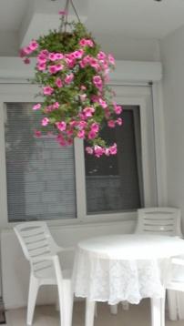 Сдается 2-х комнатная квартира с террассой и видом на море в Мисхоре - Фото 2