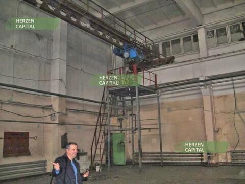 Аренда производственного помещения, Балашиха, Балашиха г. о, Балашиха - Фото 5