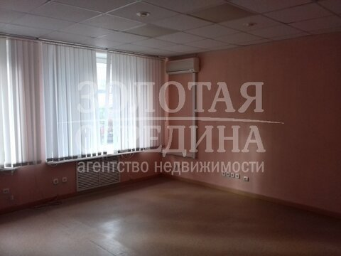 Сдам помещение под офис. Белгород, Николая Чумичова ул. - Фото 5