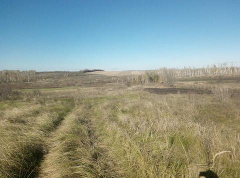 Участок 90 соток с. Боринское (15 км от Липецка) - Фото 1