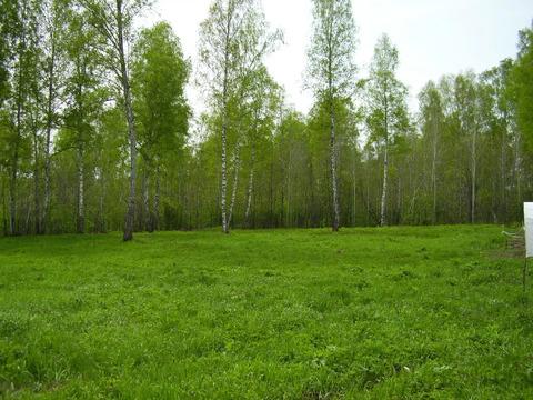 Продажа участка, Кольцово, Новосибирский район, Ул. Лазурная - Фото 3