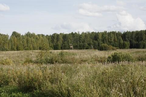 Продам земельный участок в деревне Дубровка