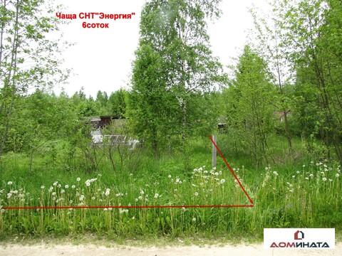 Продам участок 6 соток Ленинградская область Гатчинский район Чаша - Фото 1
