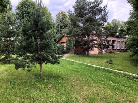 База отдыха 1.9 Га на берегу реки, 700 кв.м, Павлово-Посадский р-н, с. - Фото 3