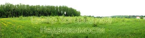 Участок, Дмитровское ш, 20 км от МКАД, Семенищево д. (Мытищинский . - Фото 4