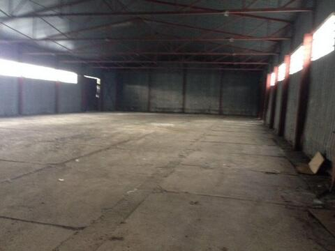Сдам производственное помещение 700 кв.м, м. Рыбацкое - Фото 3