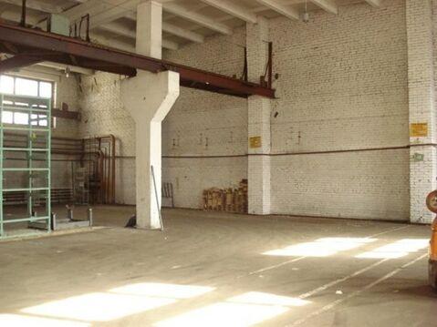 Сдам складское помещение 1390 кв.м, м. Автово - Фото 4