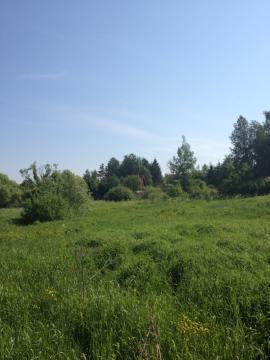 Участок 9 соток в Новой Москве дер. Давыдково - Фото 1