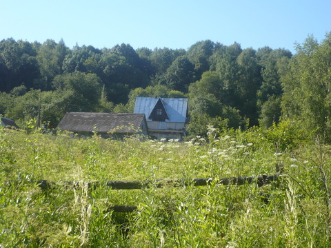 Загородный дом с большим участком. 350 км от Москвы. - Фото 2