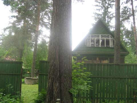 Продаю дом 72 м2 в п.Ильинский, уч-к 10 сот, сосны, ИЖС, тихое место - Фото 3