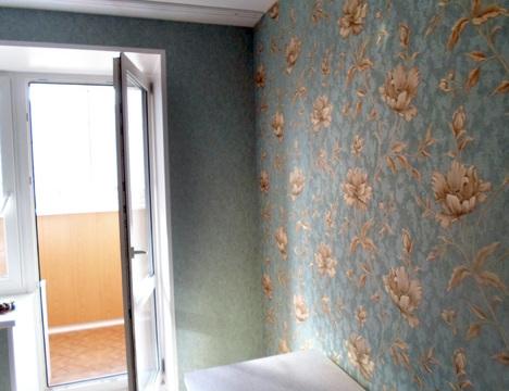 Продаётся однокомнатная квартира в Д-П, Шереметьевская 10 к2 - Фото 4