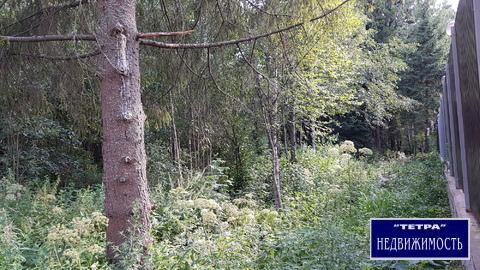 Продается лесной участок 12 соток в лесном коттеджном поселке - Фото 4