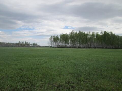 Земельный участок в Красноармейском районе поселок Лазурный - Фото 3
