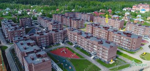 Московская область, городской округ Красногорск, деревня Сабурово, . - Фото 5