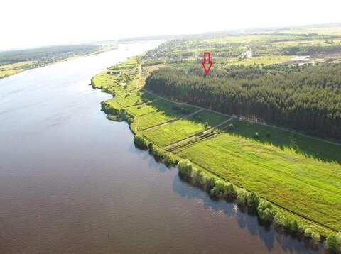 Участок с соснами рядом река Волга - Фото 3