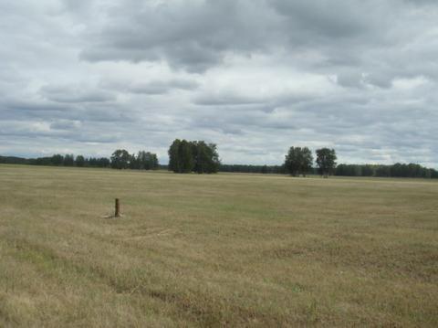 Земельный участок 15,6 га - Фото 3