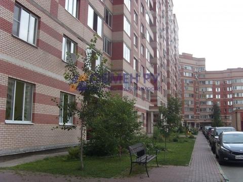 Продается квартира Пушкино, Островского ул. - Фото 1