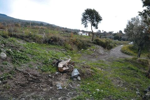 Земельный участок в Италии 2,61 га - Фото 4