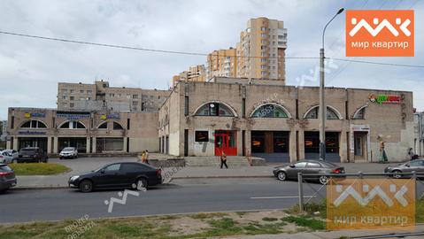 Сдается коммерческое помещение, Купчинская - Фото 3