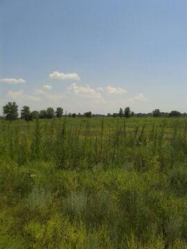 Продается земельный участок 4500 соток - Фото 2