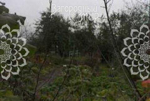 Осташковское ш, 6 км от МКАД, Беляниново - Фото 3