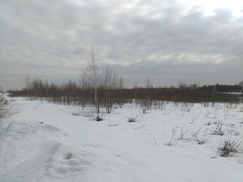 Продажа участка, Новинки, Дмитровский район - Фото 3