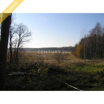 Продажа земельного участка 8,5 сот. с домом в д. Киндасово - Фото 3