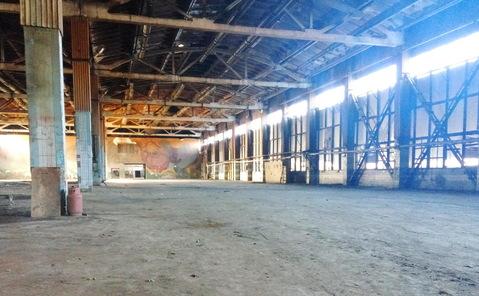 Продам производственный комплекс 16 509 кв.м. - Фото 1