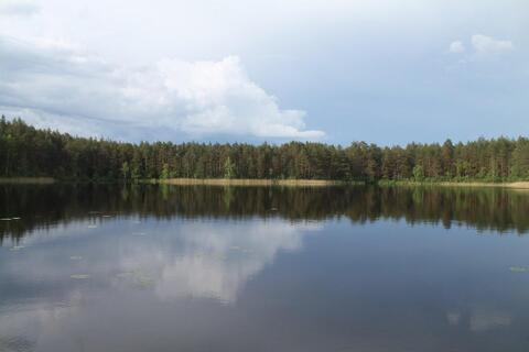 Участок рядом с озером - Фото 4