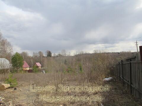 Участок, Ярославское ш, 55 км от МКАД, Зубцово д. Ярославское шоссе, . - Фото 4