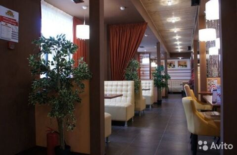 Сдам торговое помещение 307 кв.м, м. Комендантский проспект - Фото 3