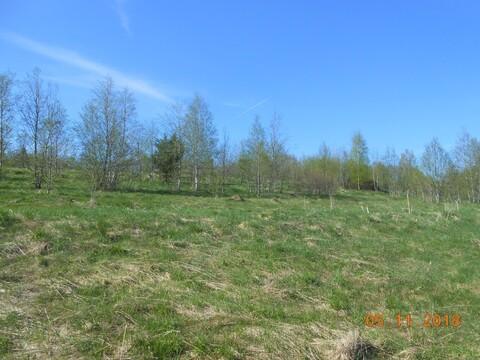 Купить земельный участок в Валдайском районев деревне Ивантеево - Фото 5