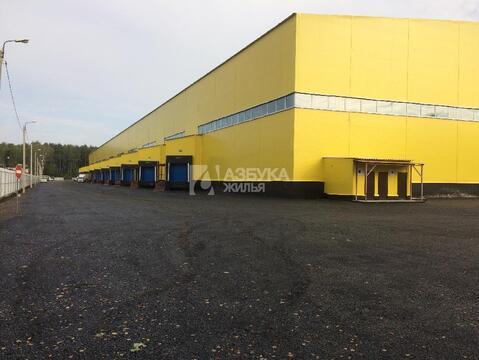 Продажа готового бизнеса, Зеленый, Ногинский район - Фото 3
