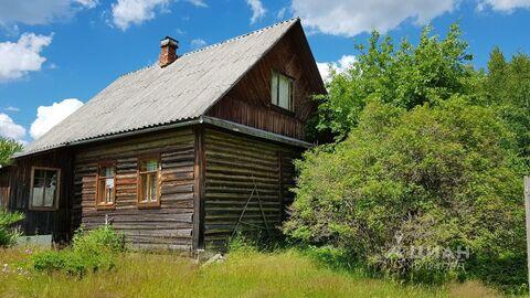 Дом в Псковская область, Плюсский район, д. Толошницы (36.0 м) - Фото 1