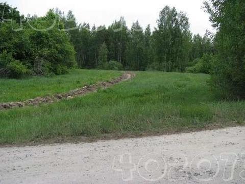 15 соток в д.Иваково, Клепиковского района, Рязанской области. - Фото 3