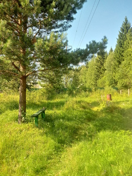 Наро-Фоминск, СНТ Изолятор. 6 соток - Фото 5
