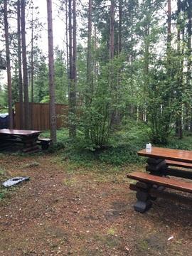 Продам дачу в поселке Юркино 31 км а/д Кола-Верхнетуломский - Фото 3