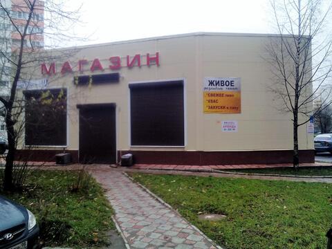 Магазин 123 кв.м у метро Озерки - Фото 1