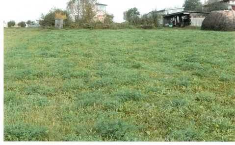 Продаю земельный участок в д.Шербаши Моргаушского р-на - Фото 2