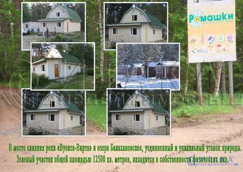 Продажа готового бизнеса, Ромашки, Приозерский район - Фото 3