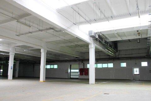 Продам производственно - складской комплекс 21361 кв.м. - Фото 3